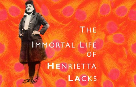 the journey of rebecca skloot in the book the immortal life of henrietta lacks by rebecca skloot Buy the immortal life of henrietta lacks 1 by rebecca skloot (isbn: 8601419100828) from amazon's book store everyday low prices and free delivery on eligible orders.